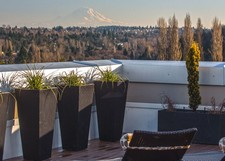 Our Luxury Apartments at The Residences at 3295 Offer Stunning Views of West Seattle.
