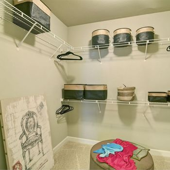 Large Closet with Wire Racks