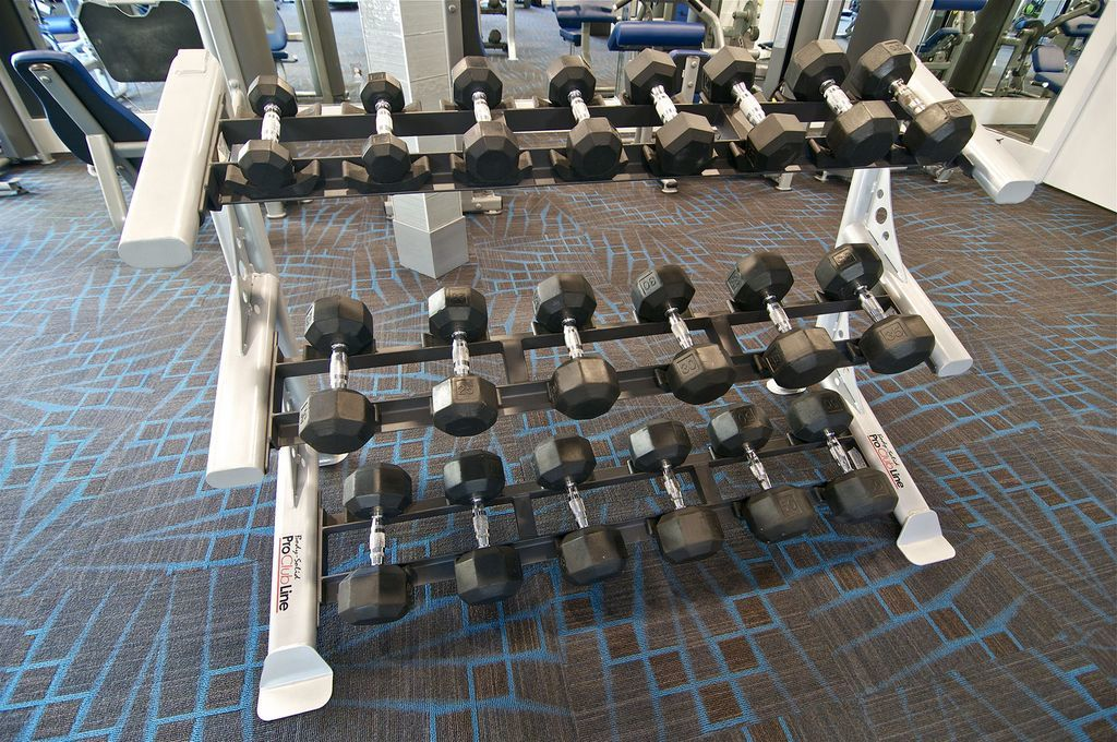 Free Weights in the Fitness Center