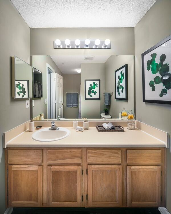 Bathroom Mirror and Medicine Cabinet
